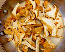 Wine Forest Wild Foods How To's Cooking Wild Mushrooms saute step 2 heat oil in a pan