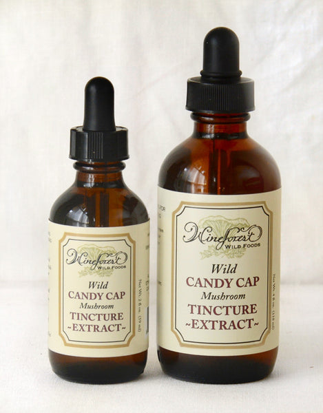 Wine Forest Candy Cap Tincture / Extract