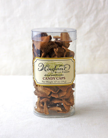 Wine Forest premium dried wild candy cap mushrooms in small and large resealable container