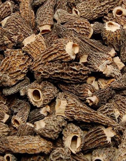 Wine Forest Wild Foods best quality gourmet Dried Wild Morel Mushrooms