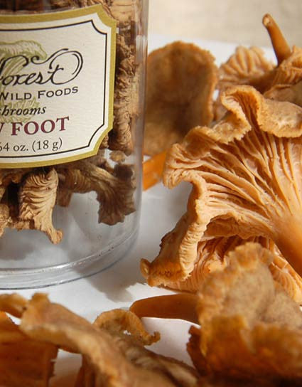 Wine Forest Wild Foods premium quality gourmet fresh and dried Wild Yellow Foot  Mushrooms