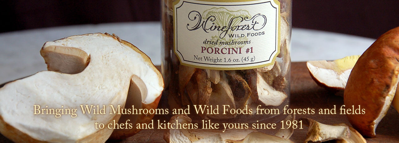Wine Forest Wild Foods premium quality sustainably sourced dried and fresh wild porcini mushrooms