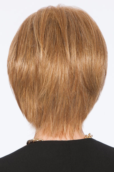 HairDo Wigs - Sleek & Chic back 1