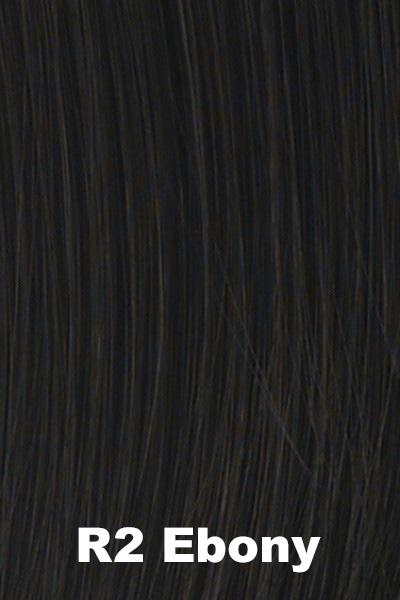 Hairdo Wigs Extensions - Top of Head (#HXTPHD) Enhancer Hairdo by Hair U Wear Ebony (R2)