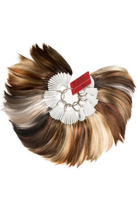 Raquel Welch Wigs : Color Ring: Raquel Welch Combo (Raquel Welch Synthetic & Tru2Life)