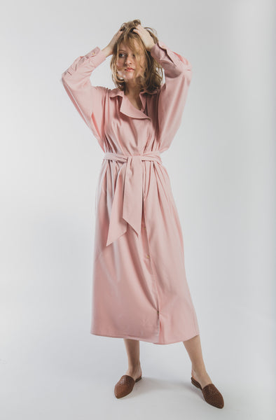 Aorta Dress in pink Raw Silk