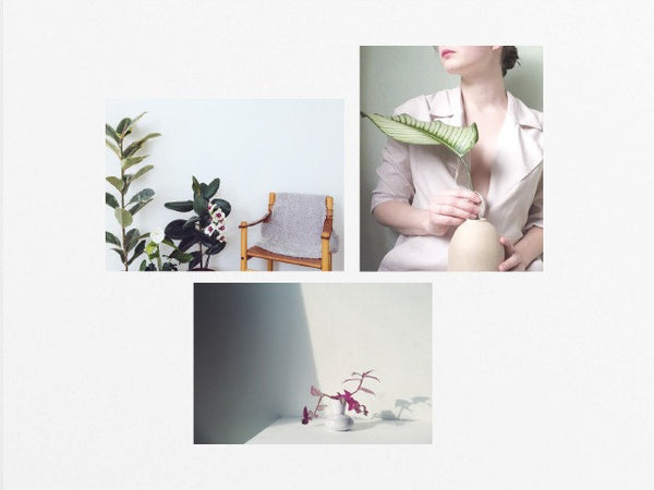 Living with Plants - Founders & Followers - Studio Caroline Gomez - 2