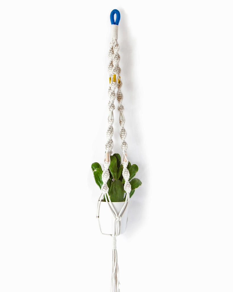 Macrame Plant Hangers in Colorblock Cenotes - Founders & Followers - Cold Picnic