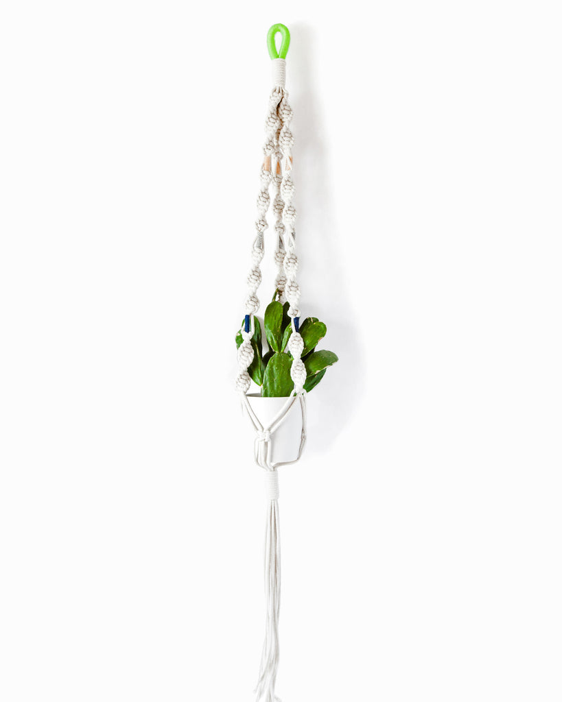 Macrame Plant Hangers in Colorblock Hawai - Founders & Followers - Cold Picnic