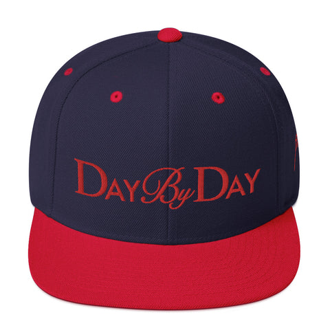 Day By Day Snapback