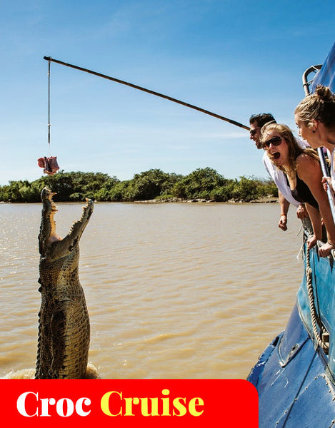 Spectacular Jumping Crocodile Cruises - Darwin