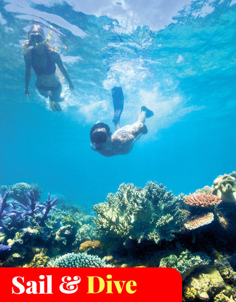 1-Day Trip Snorkel or Dive Great Barrier Reef on Sunkist