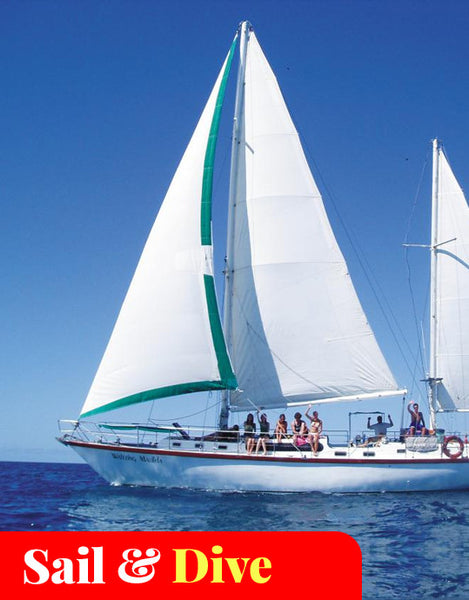 2-Days / 1-Night Maxi Yacht Sailing (Waltzing Matilda)