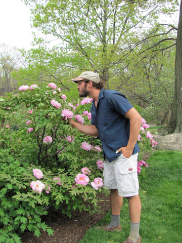 Merveilleux Dan Furman Knows A Good Peony When He Smells One.