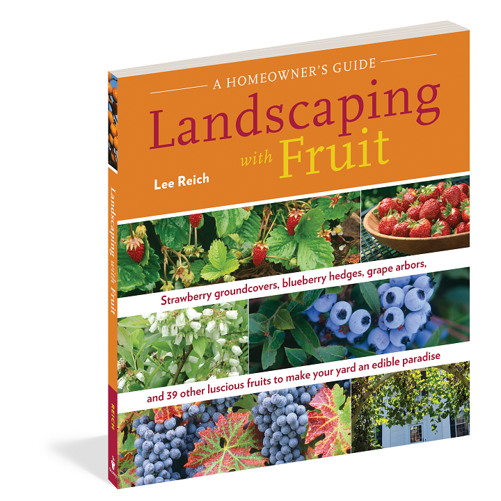 Landscaping with Fruit, by Lee Reich