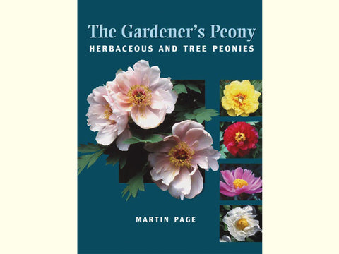 The Gardener's Peony- by Martin Page