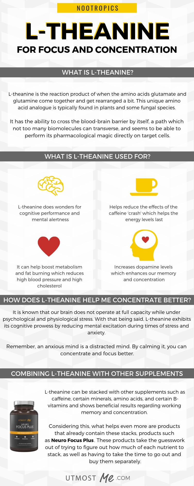 Infographic - L-Theanine for Focus and Concentration
