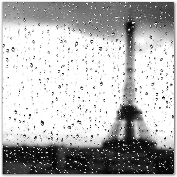 Wet Day in Paris