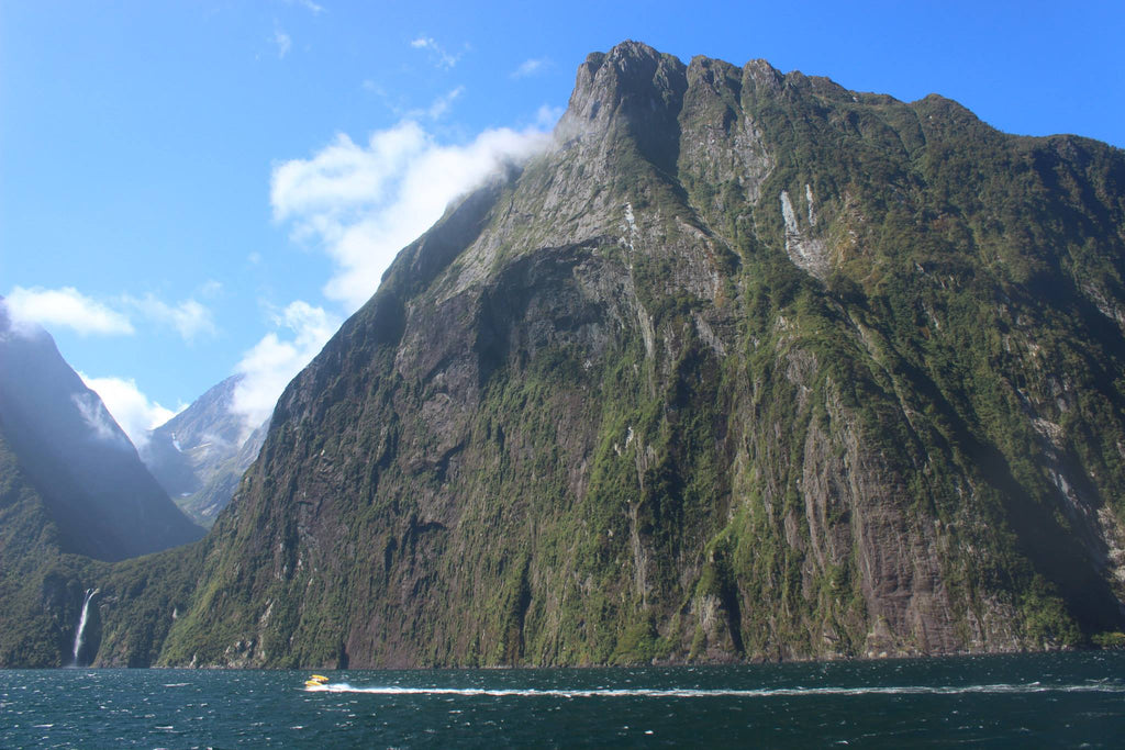 cruise-milford-sound