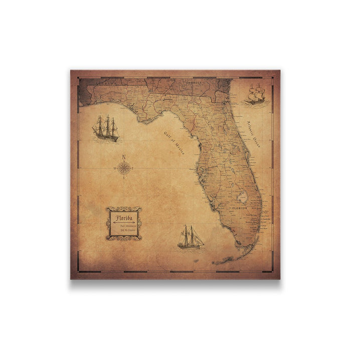 Florida Travel Map Pin Board w/Push Pins - Golden Aged