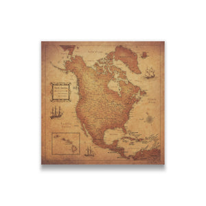 North America Travel Map Pin Board w/Push Pins - Golden Aged