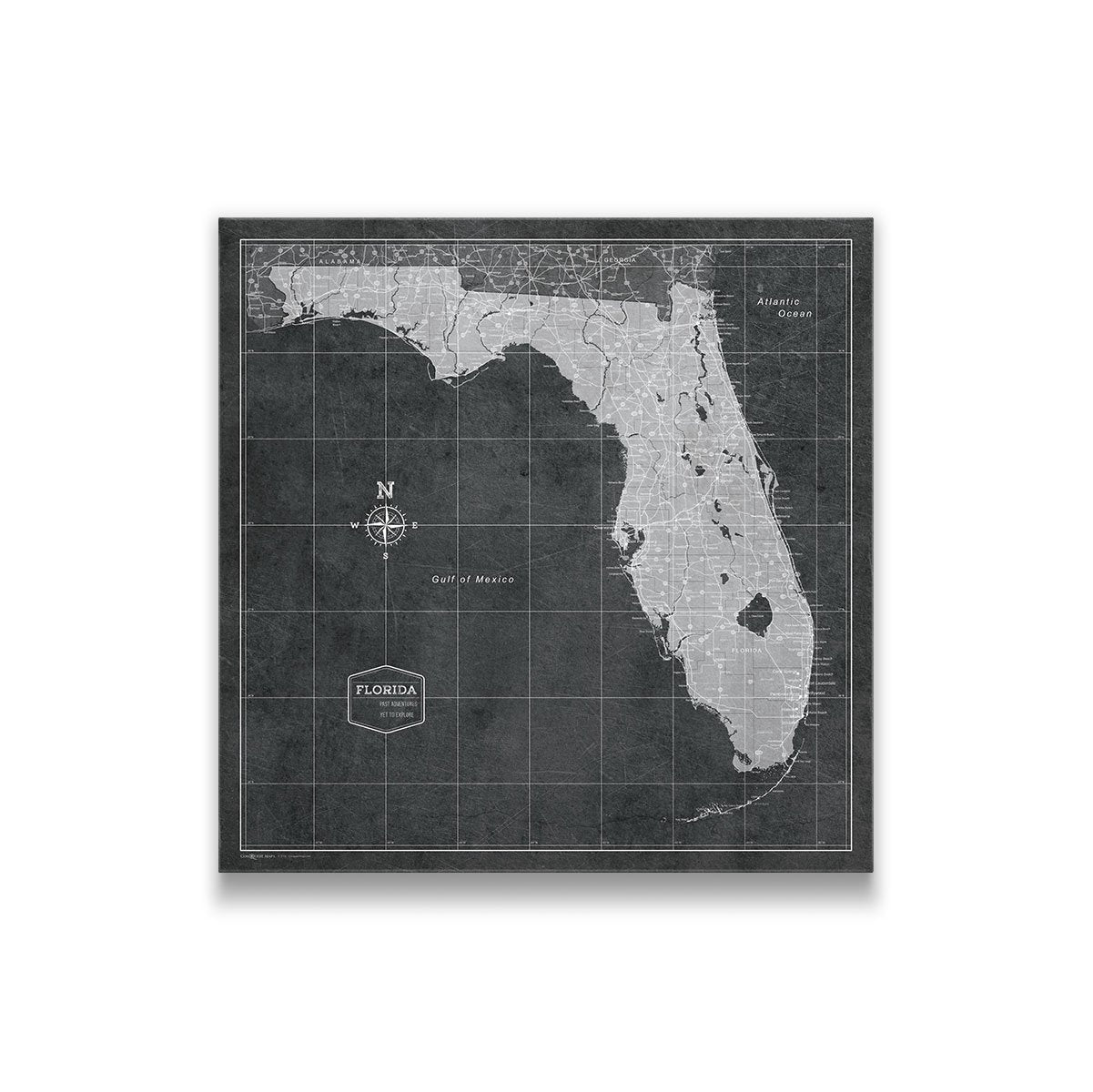 Florida State Map.Florida Travel Map Pin Board W Push Pins Modern Slate