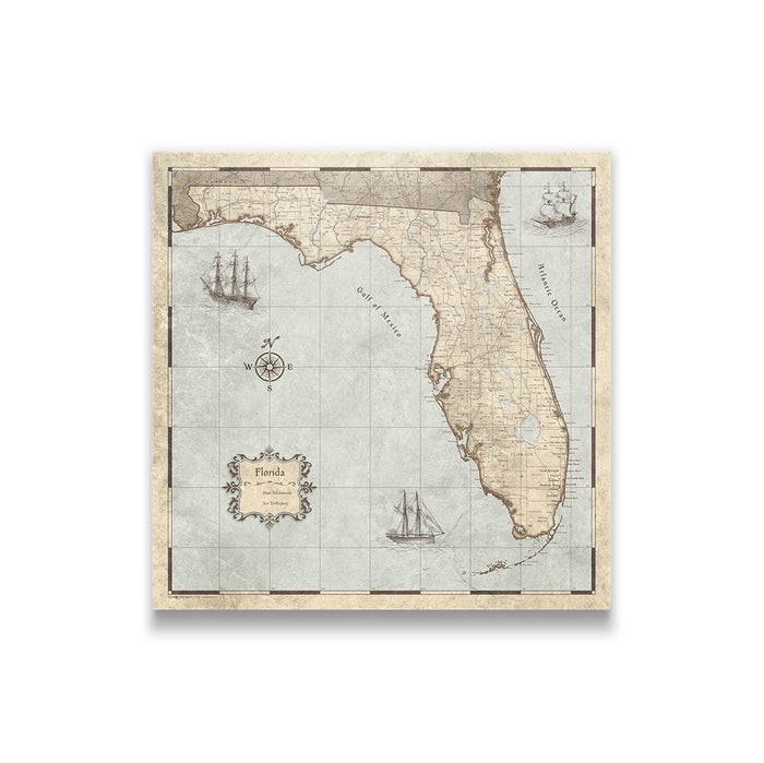 Florida Travel Map Pin Board w/Push Pins - Rustic Vintage