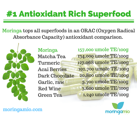 moringa antioxidants