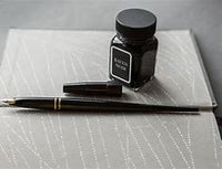 Platinum - Carbon Ink Fountain Pen