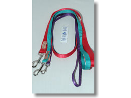 Loft Leash Dog (4563331612772)