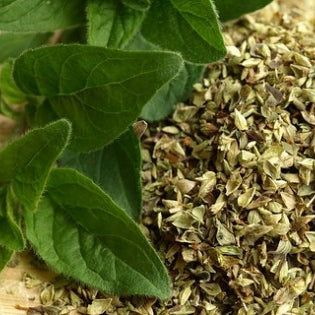 Use These Antiviral Herbs to Fight the Flu