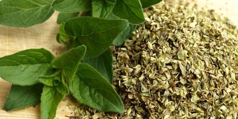 Use These Antiviral Herbs to Fight the Flu – Health As It