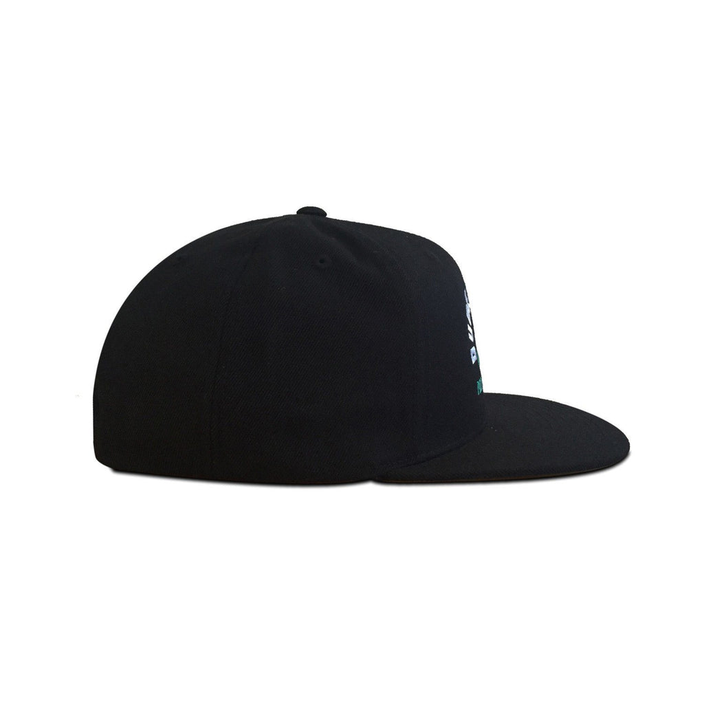 Youth Pound it Noggin Snapback // Black + White + Green