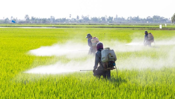 Vietnam Bans Import of Glyphosate Herbicides Following California Cancer Trial Verdict