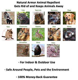Natural Armor Animal Repellent - Ready to Use, 128 oz. Gallon Peppermint Scent
