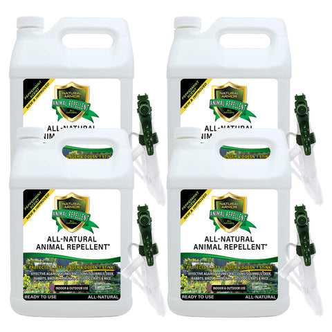 Animal Repellent - Ready to Use — Peppermint Scent - Case of (4) Gallons