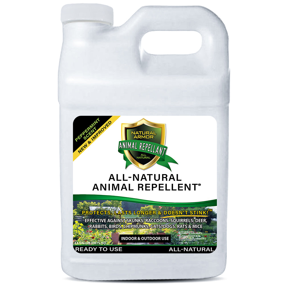 Animal Repellent -- Peppermint Scent 2.5 GALLON (320 Oz.)