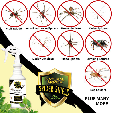 Spider Shield - GALLON (128 oz)
