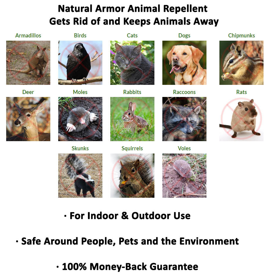 Natural Armor Animal Repellent Reviews
