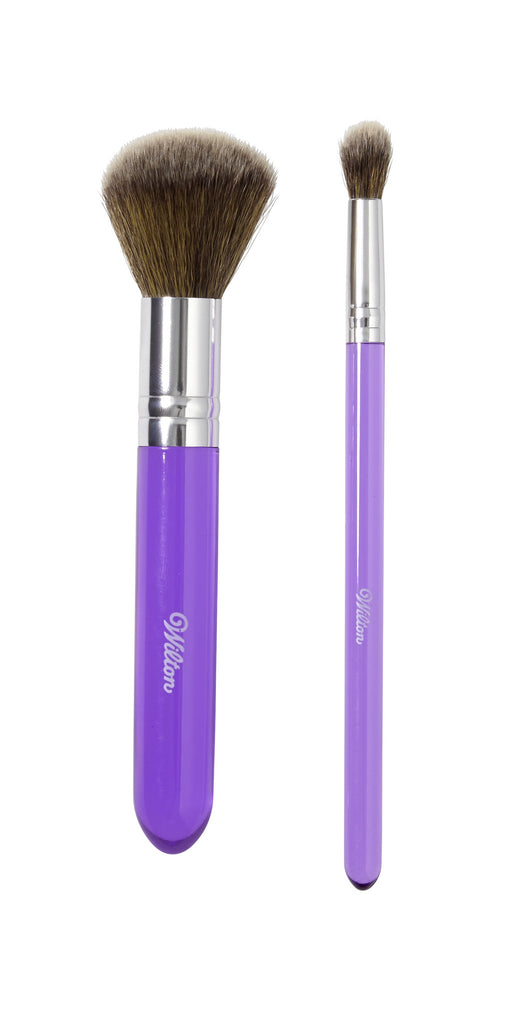 Dusting Brush Set - 2 piece