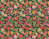 Julie Dodsworth Orangery Collection pattern swatch