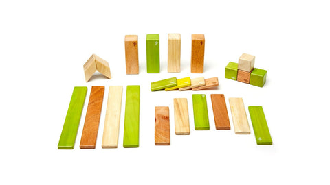 Magnetic Wooden Block Set - 24 Piece Kit - Designed in USA - Fair Trade from Honduras - CleverElement  - 2