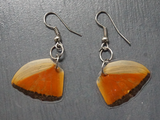 Salvaged Butterfly Wing Earrings - Fair-Trade from Ecuador - CleverElement  - 7