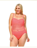 Plus Size One-Piece with Mesh Swimsuit