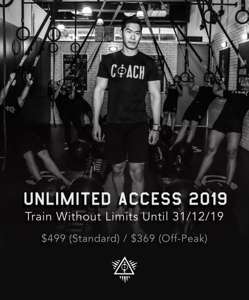 Unlimited Access 2019