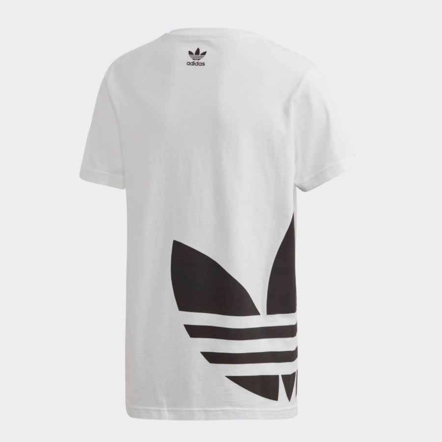 FM5680 Adidas - Youth Big Trefoil T - White Short Sleeve Shirts Adidas
