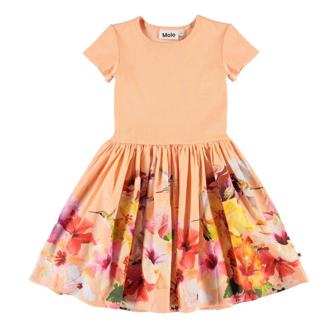 Molo - Cissa - Hummingbirds Dress Dress Molo 2/3 Years (92/98)