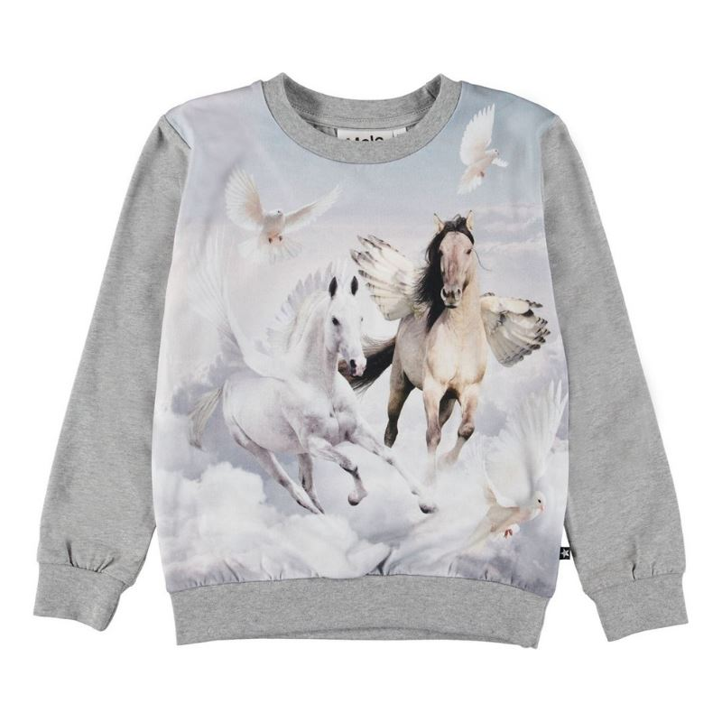 Molo -Regine Bewinged Girls Sweatshirt Sweatshirt Molo