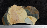 Blue Mountain Jasper Rock slab 36