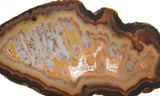 Brazilian Agate Polished Rock slab 0021